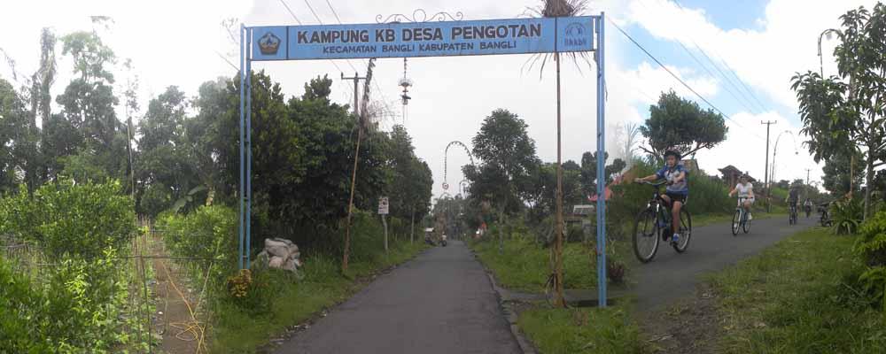 kampung kb desa pengotan