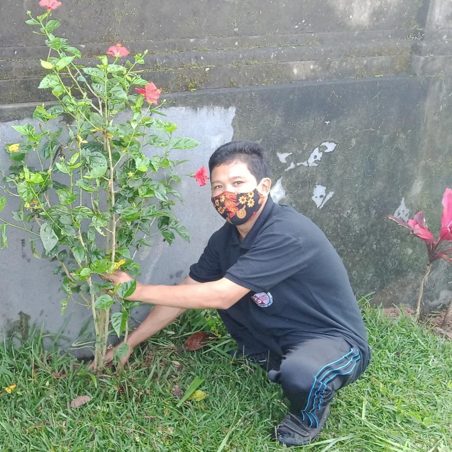 Penanaman Bunga Pucuk Bang di Depan kantor Desa Pengotan